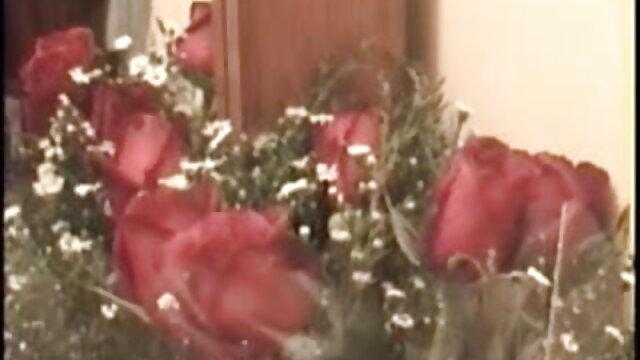 பிரேசர்கள் - கார்லி கிரே xx ஆங்கிலம் மெயின் ஒரு அழுக்கு மருத்துவரால் துடித்தார்